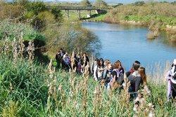 Parco Fluviale del Padrongianus