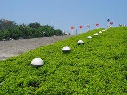 Zhangba Longan Garden
