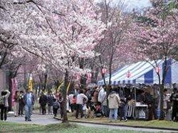 Mitsumata Mound Park