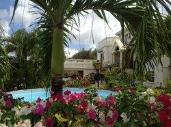 Palm Paradise Guest House + 2 Apartments