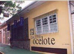 Galeria Ocelote