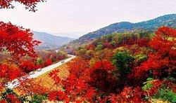 Hongye Valley