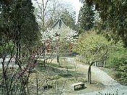 Guang Park