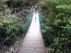 巾子峰森林公园