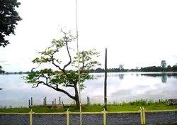 Sivasagar Pond