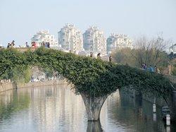 Source of Yaojiang River
