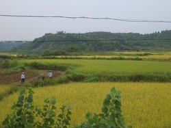 Guangshui Garden