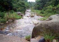 Shimentai Nature Reserve