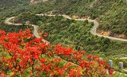 梅花山自然保護區