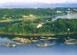 Ping Island