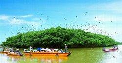 Hetang Scenic Resort
