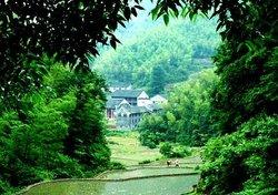 Fangguang Temple