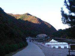 Yaolin Temple Forest Park