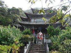 Gaoshan Azalea Garden