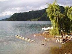 星云湖湿地