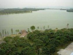 Lychee Lake