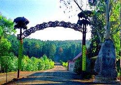 Wanjia Garden