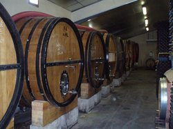 Bandol and Riviera Wine Tours