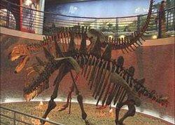 Beibei Dinosaur Site
