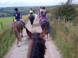 Long Mountain Pony Trekking