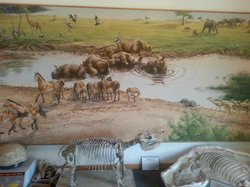 Mural at Visitor's Center of types of animals found here, in a natural setting