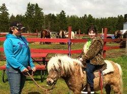 Skippers Equestrian Center