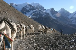 Manakamana Treks & Expedition Day Tours