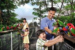 Taman Burung Jurong