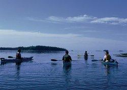 Lincoln Canoe and Kayak
