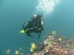 Otro Mundo Dive Center