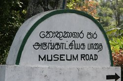 Tea Plantation Workers Museum and Archive