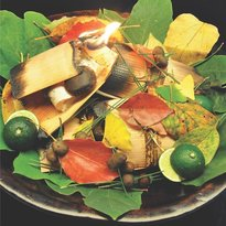 Japanese culinary art Nakagawa Gion