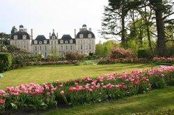 Loire Valley Gardens