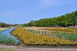 Botanic Gardens of Toyama