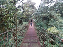 ‪Monteverde Cloud Forest Biological Reserve‬