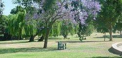 Park (64882270)