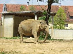 Augsburg Zoo