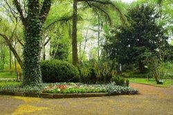Botanisches Garten / Miejski Ogrod Botaniczny