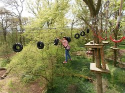 High Ropes Oxford