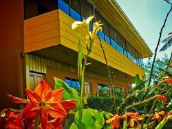 Hotel Cipreses Monteverde Costa Rica