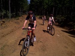 Mountain High Cycle Tours Day Tours