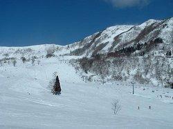 Hachi Highlands