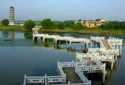 Dazong Lake Wetland