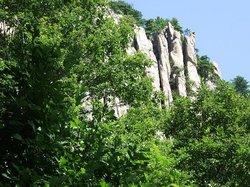 Datang qinwang Mausoleum