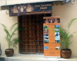 Amo Zanzibar  Day Tours