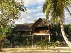 L'espace de vie du coco comba, île de Nosy Komba