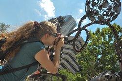 InFocus Tampa Photo Tours