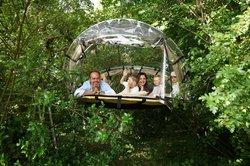La tente bulle perchée dans les arbres. Pour une nuit  ou plus: l'hebergement insolite Futurosco