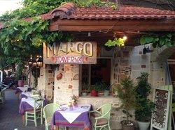 Margo Taverna