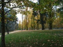 Cotter Reserve